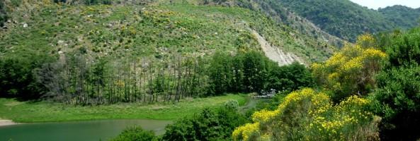 BELLEZZE DI CALABRIA: L'ASPROMONTE