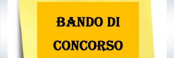 """CONCORSO PER 12 ASSUNZIONI PRESSO L'AGENZIA DELLA REGIONE CALABRIA """"ARCEA"""""""
